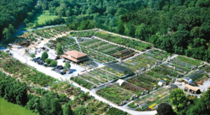 You Could Spend Hours Exploring This Massive Nursery In Maryland