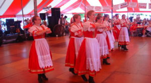 The Polish Festival In Michigan That's Full Of Authentic Delights
