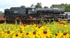 This 4-Hour Scenic Train Ride Showcases Everything We Love About Springtime In Texas