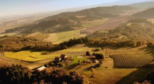 This Perfect Oregon Vineyard Has Amazing Wine And Even Lets You Spend The Night