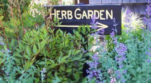 The Enchanting Herb Farm In Colorado That Feels Like A Fairy Tale Come To Life