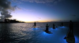 The Glowing Boat Adventure In Hawaii You Didn't Know You Needed In Your Life