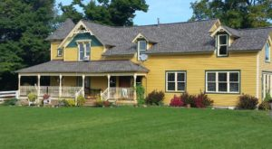 There's A Bed And Breakfast On This Horse Farm Near Detroit And You Simply Have To Visit