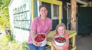 Take The Whole Family On A Day Trip To This Pick-Your-Own Strawberry Farm In Arkansas