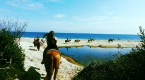 Go Horseback Riding On The Beach At The Oldest Working Ranch In New York