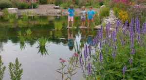 Your Kids Will Have A Blast At This Little-Known Children's Garden Hiding In Maine