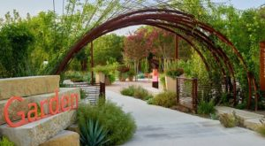 This Beautiful 38-Acre Botanical Garden Near Austin Is A Sight To Be Seen