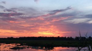 This Sunset Swamp Tour Near New Orleans Is Almost Too Good To Be True