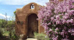 Bloom Into Spring At This Beautiful Lilac Festival In New Mexico