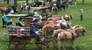 Every Marylander Should Witness This Annual Wagon Train At Least Once