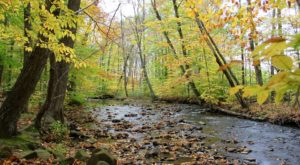 Here Is The Most Remote, Isolated Spot Close To Pittsburgh And It's Positively Breathtaking