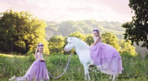 This Enchanted Festival In Indiana Will Transport You To A Real-Life Fairyland