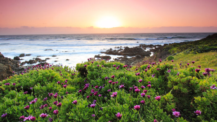 You'll Want To Move To This Picture-Perfect Beach Town On The West Coast