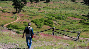 The Colorado Hike That Has Some Of The Best Wildlife Sightings In The Country