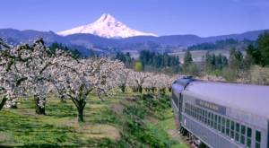 This 3-Hour Scenic Train Ride Showcases Everything We Love About Springtime In Oregon
