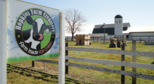 7 Family Friendly Farms In Delaware That Make For Delightful Day Trips