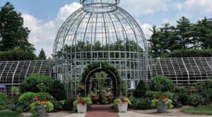 Step Into A Whimsical Wonderland At This Lush Michigan Conservatory