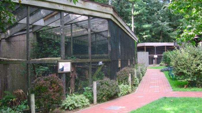 Ohio Bird Sanctuary Is Home To Many Species Of Birds