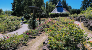 This Public Garden In Northern California Is A Magnificent Hidden Gem