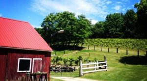 The Bicentennial Farm Winery In Connecticut That's Just As Charming As It Sounds
