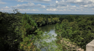 Walk Along The Same Path As The State's First Explorers At This Historic Arkansas Trail