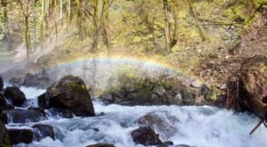 Take This Easy Trail To An Amazing Triple Waterfall In Washington