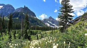 These 7 Alpine Hikes In Montana Will Turn Anyone Into A Nature Lover