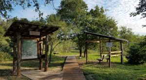 A Day Trip To This Tranquil Hiking Trail Near Austin Will Make Your Spring Complete