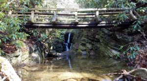 7 Totally Kid-Friendly Hikes In North Carolina That Are 1 Mile And Under