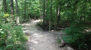 This Quaint Little Trail Is The Shortest And Sweetest Hike Near Detroit