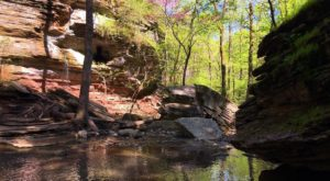 This Lost Arkansas Trail Is Finally Open To The Public Once Again And It's Calling Your Name