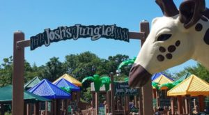 Your Kids Will Have A Roaring Good Time At This Jungle-Themed Playground In Connecticut