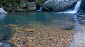 The Hike To This Little-Known Arkansas Waterfall Is Short And Sweet