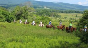 The Adventure Farm In West Virginia That's Too Good To Pass Up
