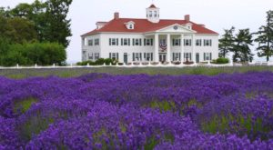 This Historic Washington Inn Sits On A Waterfront Lavender Farm
