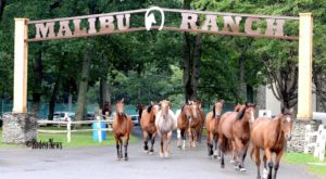 The Remarkable Ranch Getaway In Pennsylvania That Will Turn Anyone Into A Cowboy