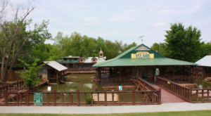 The One Of A Kind Alligator Park In Louisiana That Your Kids Will Absolutely Love