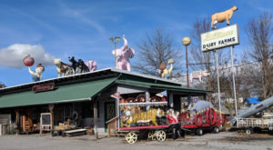 The One Roadside Dining Attraction In North Carolina You Won't Be Able To Pass Up