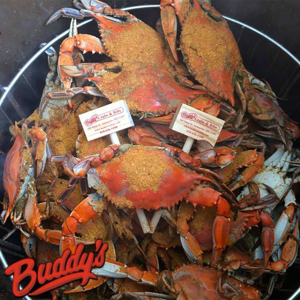 Try The Buffet At Buddy's Crabs & Ribs In Maryland
