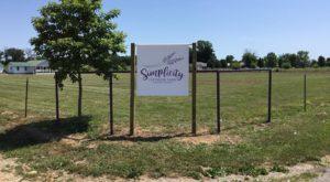 Missouri's Annual Lavender Festival Belongs On Your Springtime Bucket List