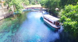 The Amazing Glass-Bottomed Boat Tour Near Austin Will Bring Out The Adventurer In You