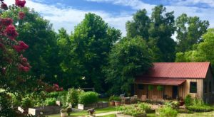 There's A Bed And Breakfast On This Flower Farm In Georgia And You'll Have The Most Enchanting Stay