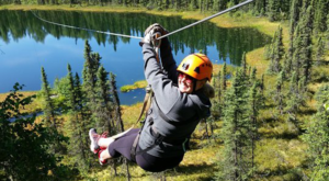 The Safari Adventure Course That Will Make You Forget You're In Alaska