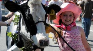 Celebrate Spring In Vermont With This Whimsical Cow Parade And Festival