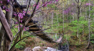 The One Park In Kentucky With Swinging Bridges, Caves, Camping, And Trails Truly Has It All