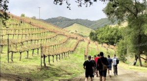 The One-Of-A-Kind Wine Hike In Southern  California That Makes For An Unforgettable Day Trip