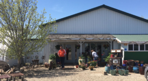 This Greenhouse Restaurant In North Dakota Is The Most Enchanting Place To Eat