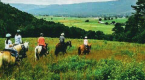 The Remarkable Ranch Getaway In Tennessee That Will Turn Anyone Into A Cowboy
