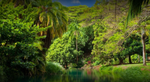 Strolling Through This 252-Acre Garden Hiding In Hawaii Is Like Entering A Fairytale