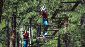 The Stomach-Dropping Canopy Walk You Can Only Find In Arizona